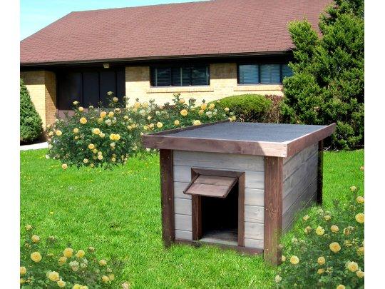 medium doghouse