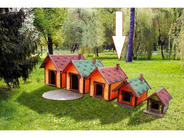 Small doghouse